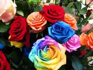 rosas-de-colores-en-la-floreria-arreglos-florales-para-el-dia-de-las-madres